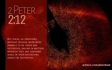2 peter 2.12